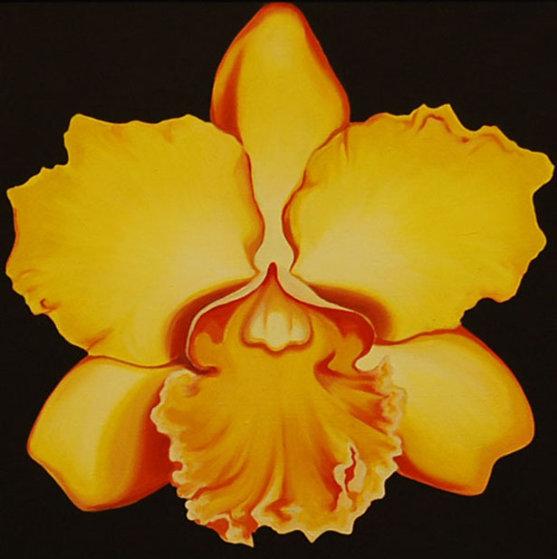 Yellow Orchid 1970 22x22 Original Painting by Lowell Blair Nesbitt