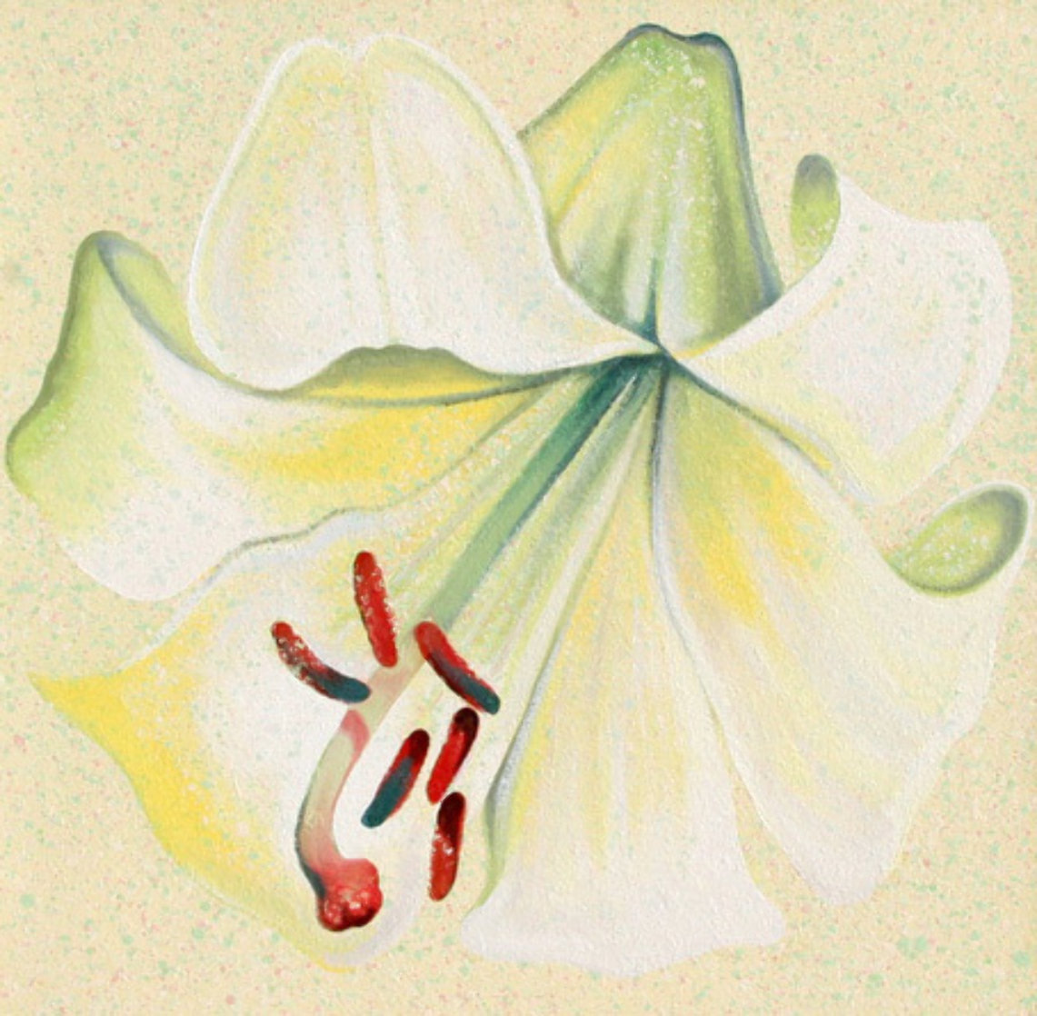 White Lily 1982 26x26 Original Painting by Lowell Blair Nesbitt