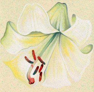 White Lily 1982 26x26 Original Painting by Lowell Blair Nesbitt