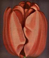Tulip 1977 Limited Edition Print by Lowell Blair Nesbitt - 0