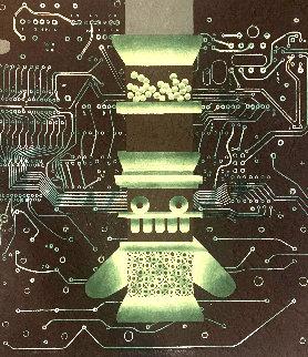 Mariposa Obsidiana 10 1981 Limited Edition Print - Brian Nissen