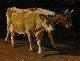 Cows 2014 39x54  Original Painting - Robert Nizamov