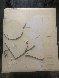 Geometric Mouse Scale D 1971 Sculpture by Claes Thure Oldenburg - 3