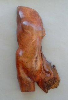 Daphne Unique Wood Sculpture Sculpture - Leo E. Osborne