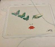Eyes of Otsuka - Butterflies Limited Edition Print by Hisashi Otsuka - 7