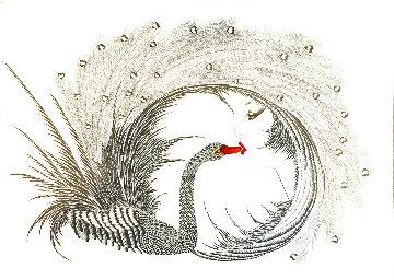 Black Swan 1986 Limited Edition Print by Hisashi Otsuka