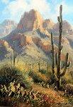 Saguaro Shadows 18x22 Original Painting - Charles H Pabst