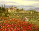 Tuscany Red Poppies 2010 Embellished Limited Edition Print by Sam Park - 0
