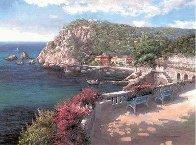 Costa Brava PP Huge  Limited Edition Print by Sam Park - 1