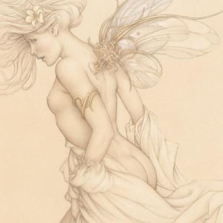 Startled Sky Nymph Limited Edition Print by Michael Parkes