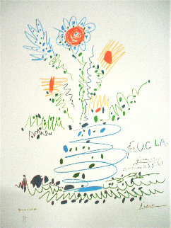 Flowers For UCLA EA 1961 (Early) 12 Watchers Limited Edition Print - Pablo Picasso