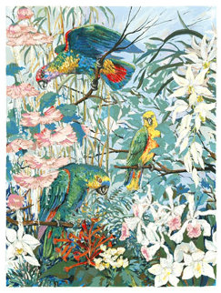 Parrots and Hibiscus 1985 Limited Edition Print by John Powell