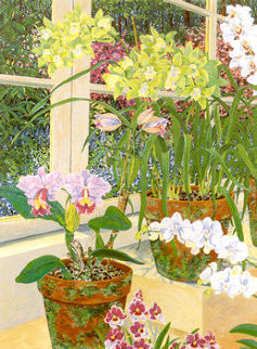 Orchids & Sunlight PP Limited Edition Print - John Powell