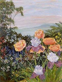 Botanical Bay PP Limited Edition Print by John Powell