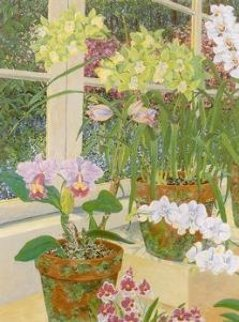 Orchids and Sunlight PP Limited Edition Print - John Powell
