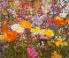 Iceland Poppies 1988 Limited Edition Print by John Powell - 0