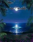 Shining Sea 2003 Limited Edition Print - Steven Power