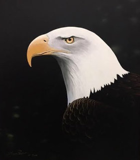 Noble Eagle AP 2002 Limited Edition Print by Steven Power