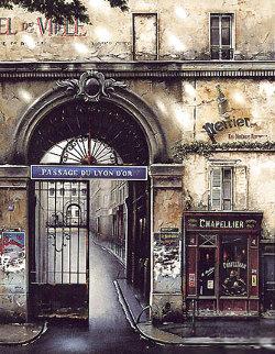 Passage Du Lyon 1994 Limited Edition Print - Thomas Pradzynski