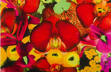 Untitled 02, At the Far Edges of the Universe 2010 Limited Edition Print by Marc Quinn
