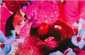 Untitled 08, At the Far Edges of the Universe Limited Edition Print by Marc Quinn