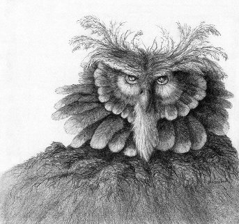 Wise Likeness 1984 22x20 Drawing - Peter Rashford
