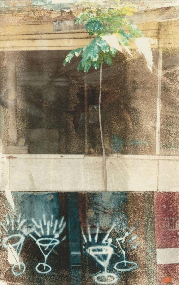 Party 2006 Limited Edition Print by Robert Rauschenberg