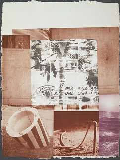 Rookery Mounds, Gray Garden 1979 Limited Edition Print by Robert Rauschenberg