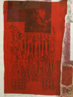 More Distant Visible Part of the Red Sea - 1979 Limited Edition Print - Robert Rauschenberg