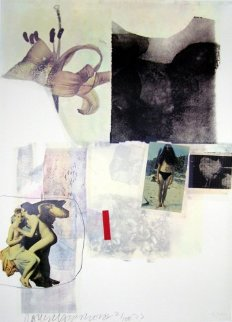 Untitled - 1973 Limited Edition Print - Robert Rauschenberg
