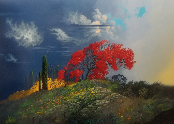 Seasons of Light 2003 Limited Edition Print by Bruce Ricker