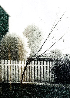 Gardens 1980 Limited Edition Print - Robert Kipniss