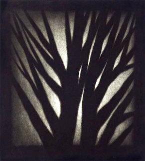 Shadow Show Limited Edition Print - Robert Kipniss