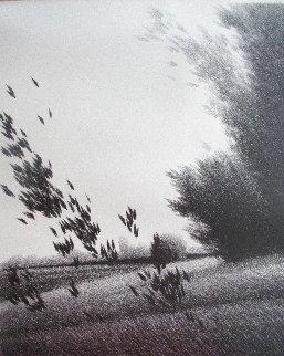 Leaves Limited Edition Print - Robert Kipniss