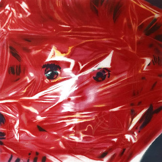 Gift Wrapped Doll  1993 AP Limited Edition Print - James Rosenquist