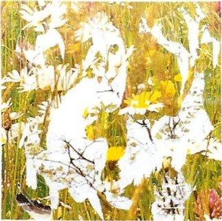 Erbario 1997 12x12 Original Painting - Mimmo Rotella