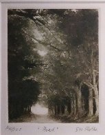 Road 1979 Limited Edition Print by G.H Rothe - 1