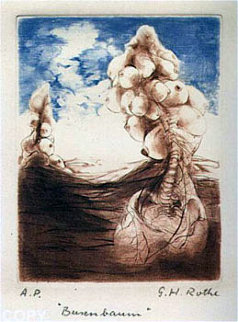 Busenbaum Limited Edition Print - G.H Rothe