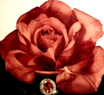 Glass Rose 1993 Limited Edition Print - G.H Rothe
