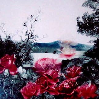 Rose Escape Limited Edition Print - G.H Rothe