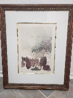 Bougainvillea 1980 Limited Edition Print by G.H Rothe - 1