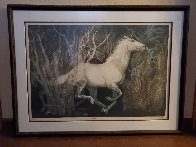 Colts Limited Edition Print by G.H Rothe - 1