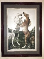 Powerplay 1984 Limited Edition Print by G.H Rothe - 1