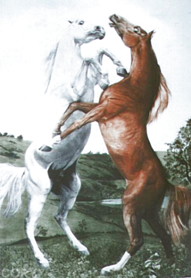 Powerplay 1984 Limited Edition Print by G.H Rothe