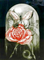 Rose Limited Edition Print by G.H Rothe - 0