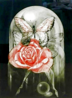 Rose Limited Edition Print - G.H Rothe
