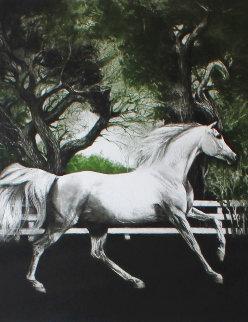 Arabian Colt / Arabian Nights: Set of 2 Prints Limited Edition Print - G.H Rothe