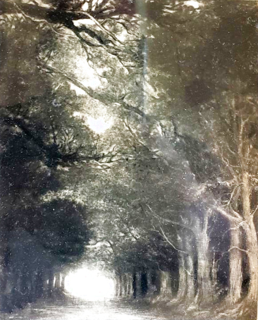Road Limited Edition Print by G.H Rothe