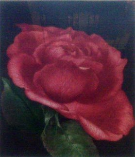 Spanish Rose 1978 Limited Edition Print by G.H Rothe