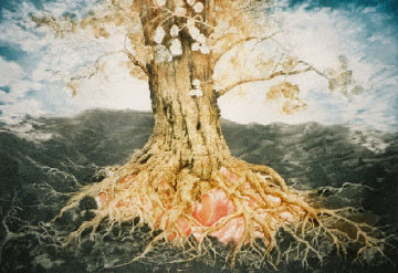 Oak Tree 1994 Limited Edition Print by G.H Rothe